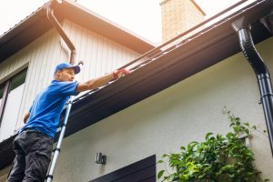 gutter cleaning professional help